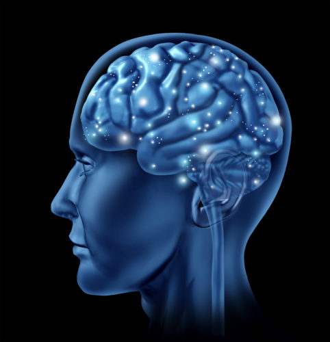 White and Grey matter in the brain - Belar.info